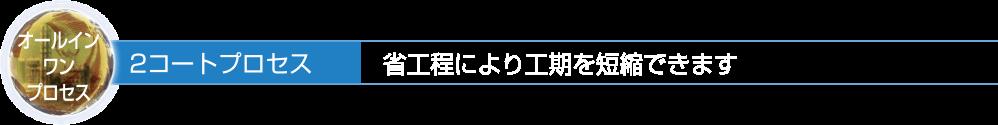 天日・日吉のオールインワンプロセス