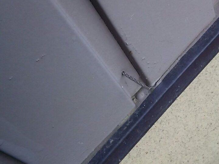 外壁釘浮き打ち直し